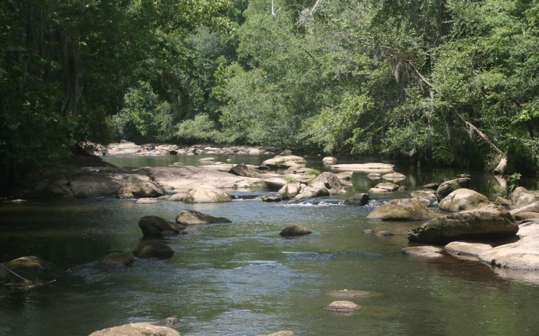 Saluda Riverwalk